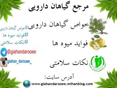 کانال مرجع گیاهان دارویی