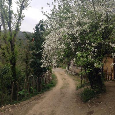کانال روستای چی چی نی کوتی