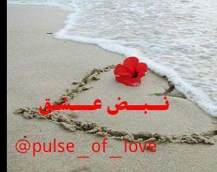 کانال نبض عشق