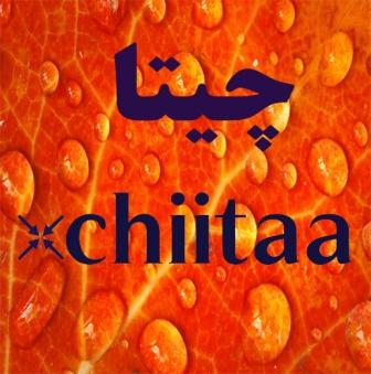 کانال چیتا