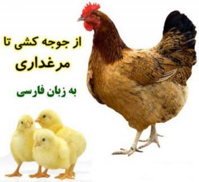 کانال مجله تلگرامی طیوران