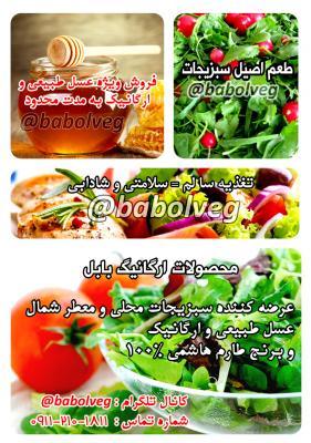 کانال سبزیجات ارگانیک بابل