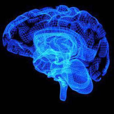 کانال The Brain Corner