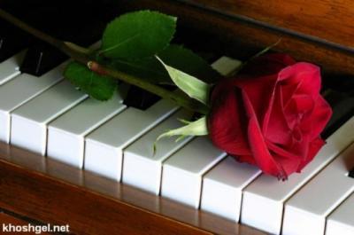کانال عاشقان پیانو