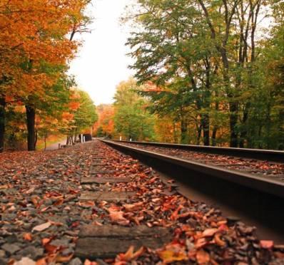 کانال رسمی راه اهن