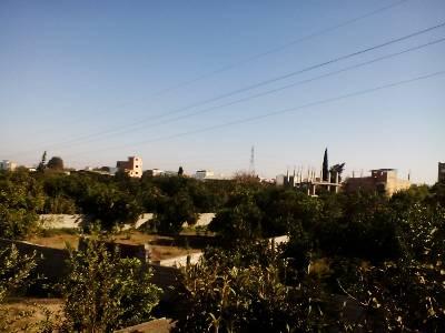 کانال shahi