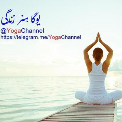 کانال یوگا هنر زندگی