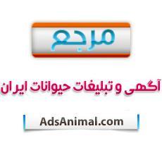 کانال مرجع آگهی حیوانات