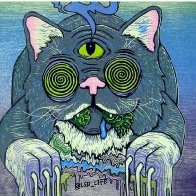 کانال LSD_LIFE