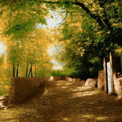 کانال کوچه باغ شعر