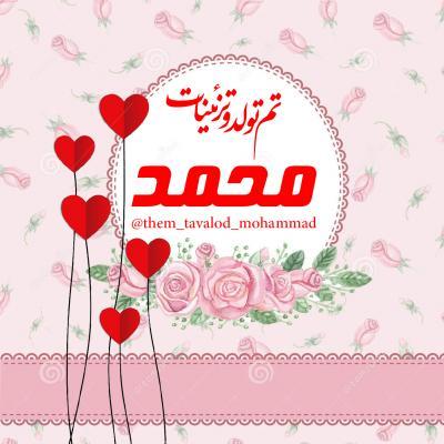 کانال تم تولد و تزیینات محمد