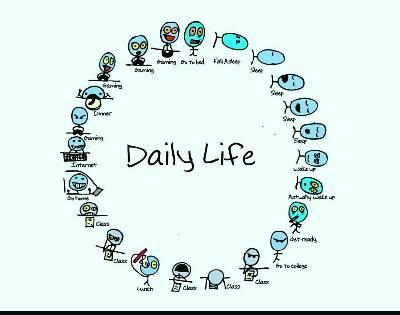 کانال بهترین ها Daily life