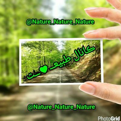 کانال Nature