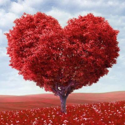 کانال عشق هوشمند
