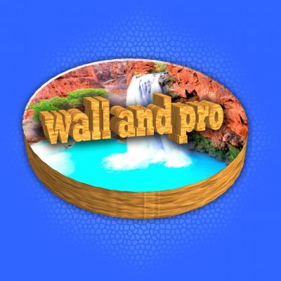 کانال wall and pro