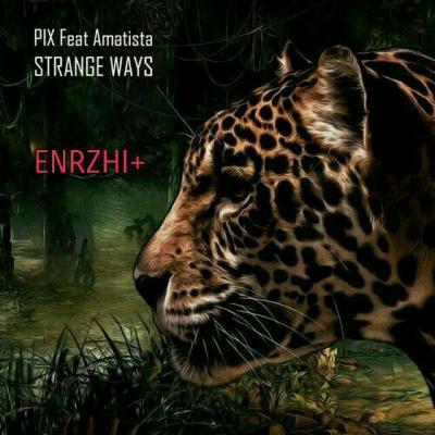 کانال ENRZHI+