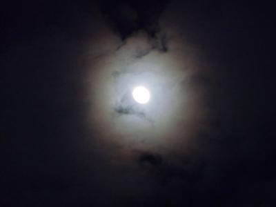 کانال ماه و مِه