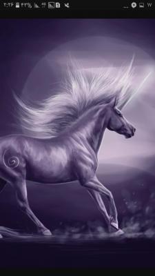 کانال Unicorn