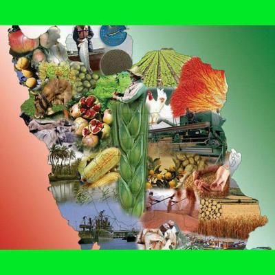 کانال کشاورزی ایران