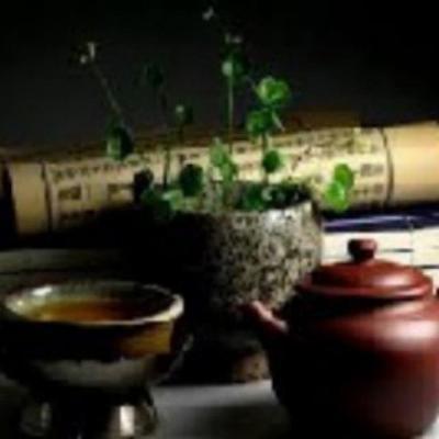 کانال گیاهان دارویی عطالو