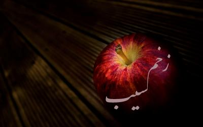 کانال فرهنگی زخم سیب