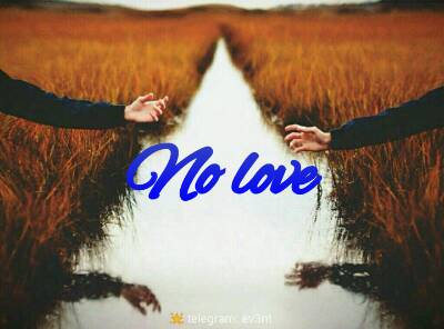 کانال No love