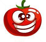کانال هوش و سرگرمی گوجه