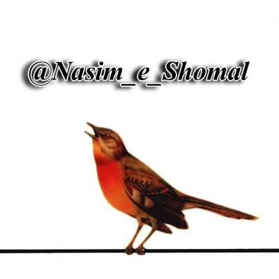 کانال موسیقی شعر نسیم شمال