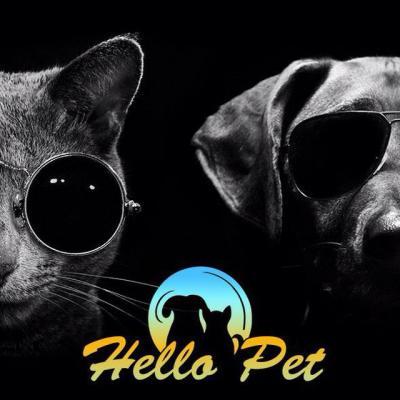 کانال لوازم حیوانات خانگی