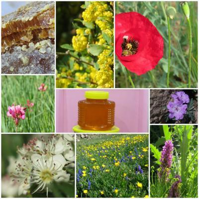 کانال عسل طبیعی