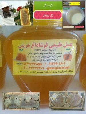 کانال عسل قوشاداغ