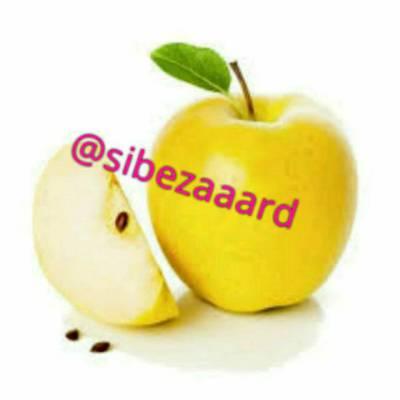 کانال سیب زرد