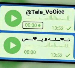کانال تـله ویس
