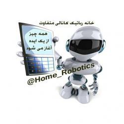 کانال خانه رباتیک بم