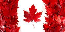 کانال ویزای توریستی کانادا