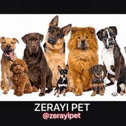 کانال نکات آموزشی حیوانات