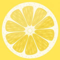 کانال استودیو انیمیشن لیمو