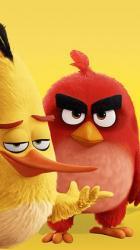 کانال پرندگان خشمگین