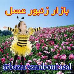 کانال بازار زنبورعسل ایران