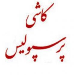 کانال کاشی پرسپولیس تهران