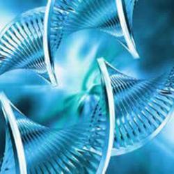 کانال زیست شناسی برای موفقیت