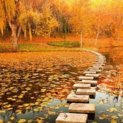 کانال Beautiful path