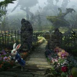 کانال Wonderland