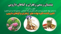 کانال زعفران و گیاهان داروی