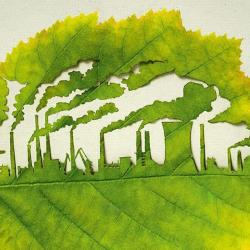 کانال هر ایرانی یک درخت