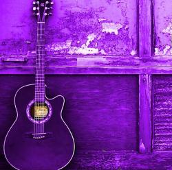 کانال purple_dream
