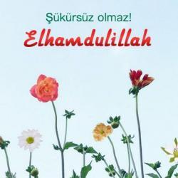 کانال زبان ترکی استانبولی