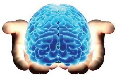 کانال Fun.IQ.brain
