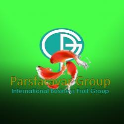 کانال Parsfaravar Group