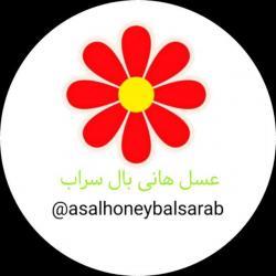 کانال 🐝عسل هانی بال 🍯 honey baal🐝